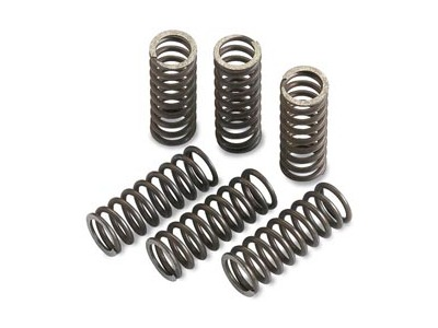 Moose Clutch Spring Kit